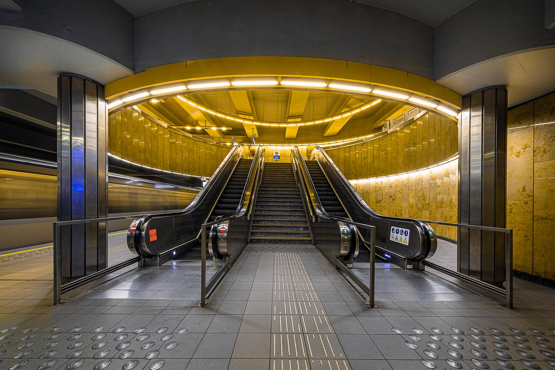 """Schieven Regards III – Hélène Cook : """"Metro  Creatures"""""""